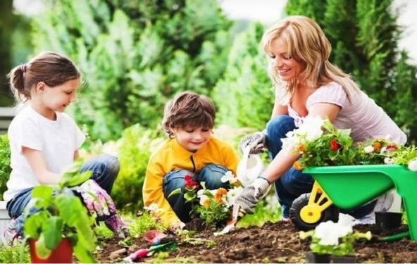 Направете ваша градина со органски зеленчук