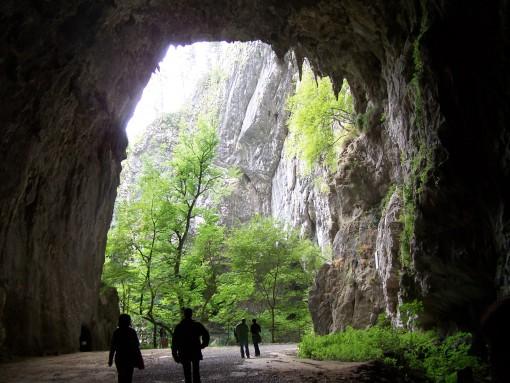 Vhod v jame