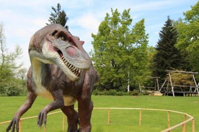 Katera vrsta dinozavra je to?