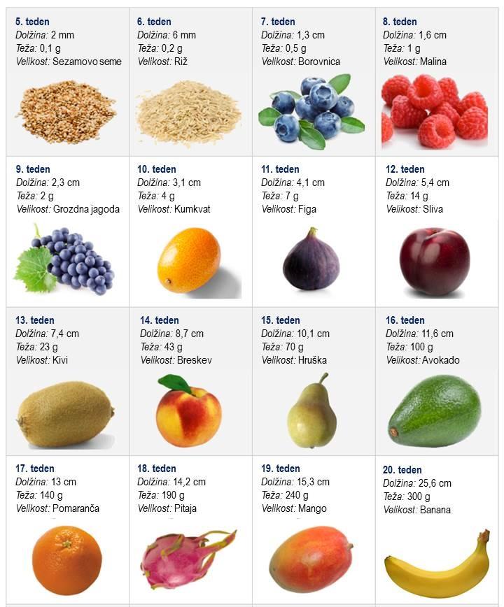 sadje 1