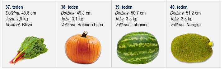 sadje 3