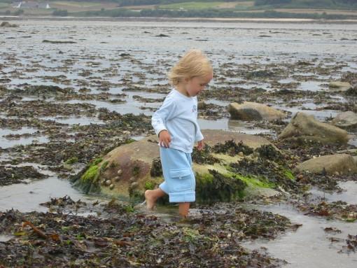 Raziskovanje bretonske obale