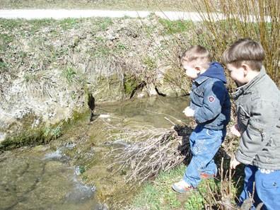 Opazovanje in igranje ob potoku