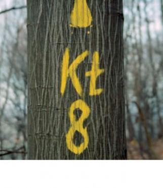 Gozdna učna pot