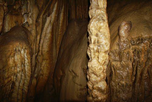 V jami