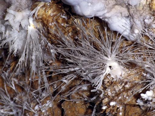 Aragonitni ježki