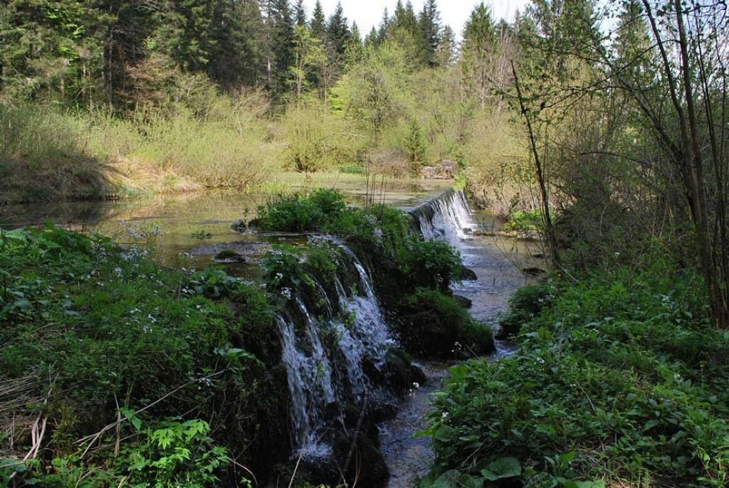 Na poti lahko občudujemo tudi slapove (F: vnaravi.si)
