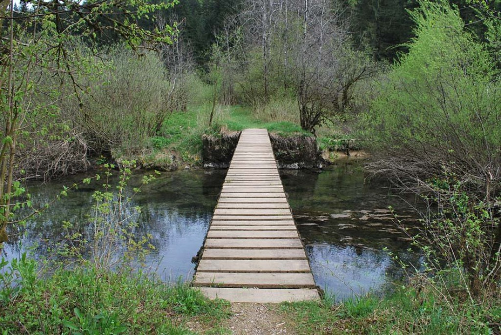 Lesena brv na poti čez vodo (F: vnaravi.si)