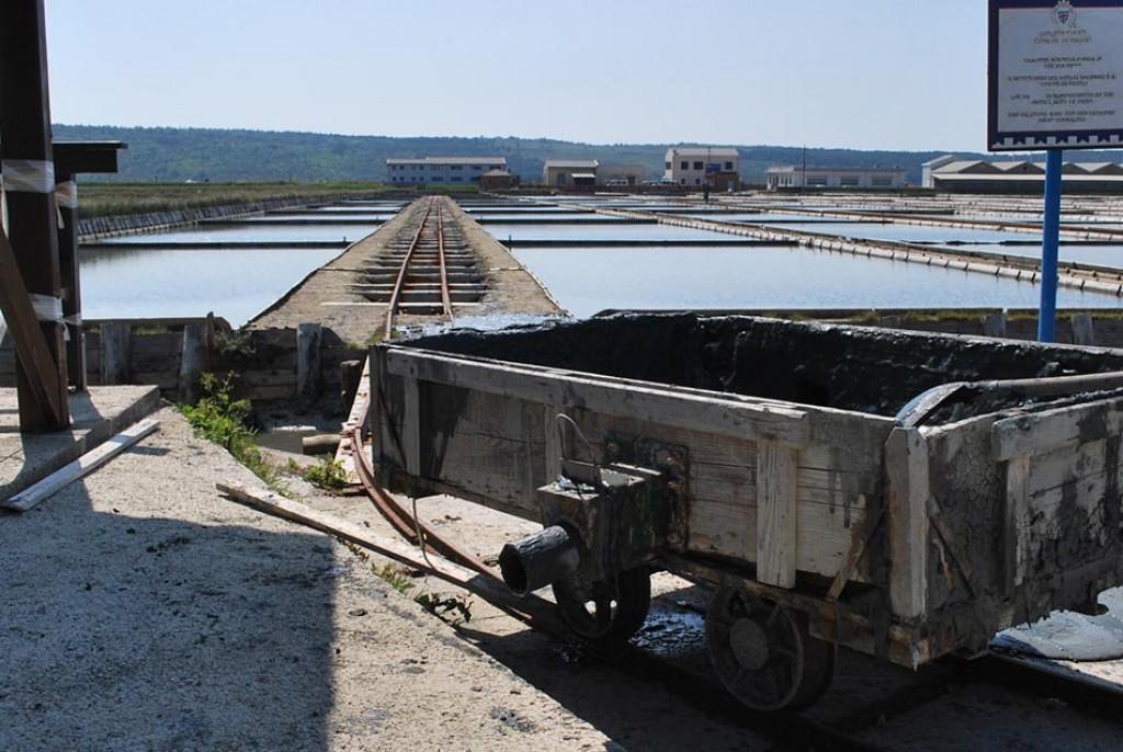 Voziček za prevoz soli (F: vnaravi.si)