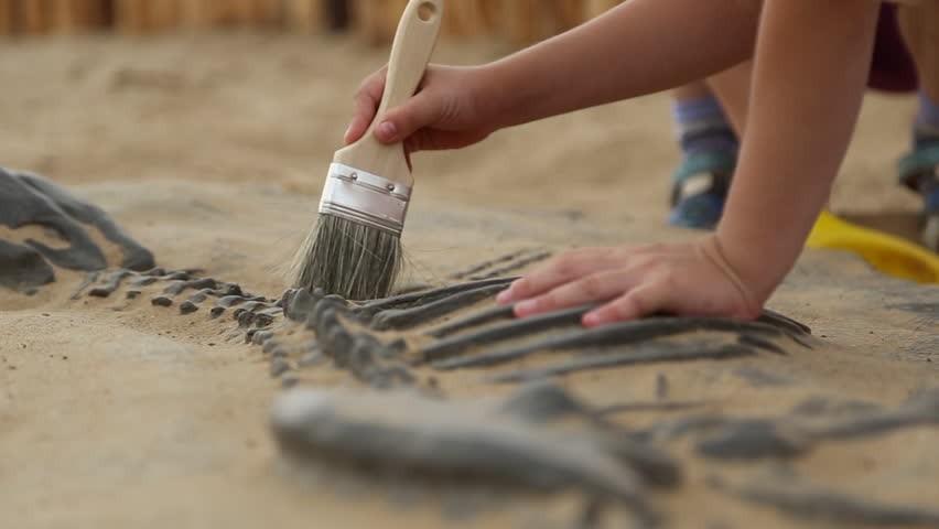 Otroci bodo izkopavali fosilne ostanke dinozavrov.