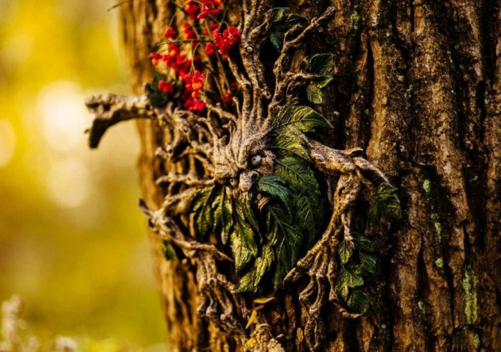 Kdo pa to leze iz drevesa?