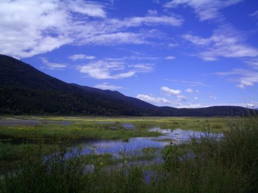 Zgodnje poletje - Cerkniško jezero