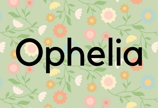 Grško ime, ki simbolizira pomoč.