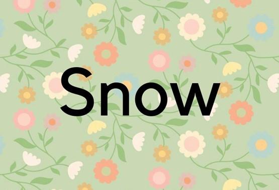 V slovenščini je slišati bolj prikupno Snežinka.