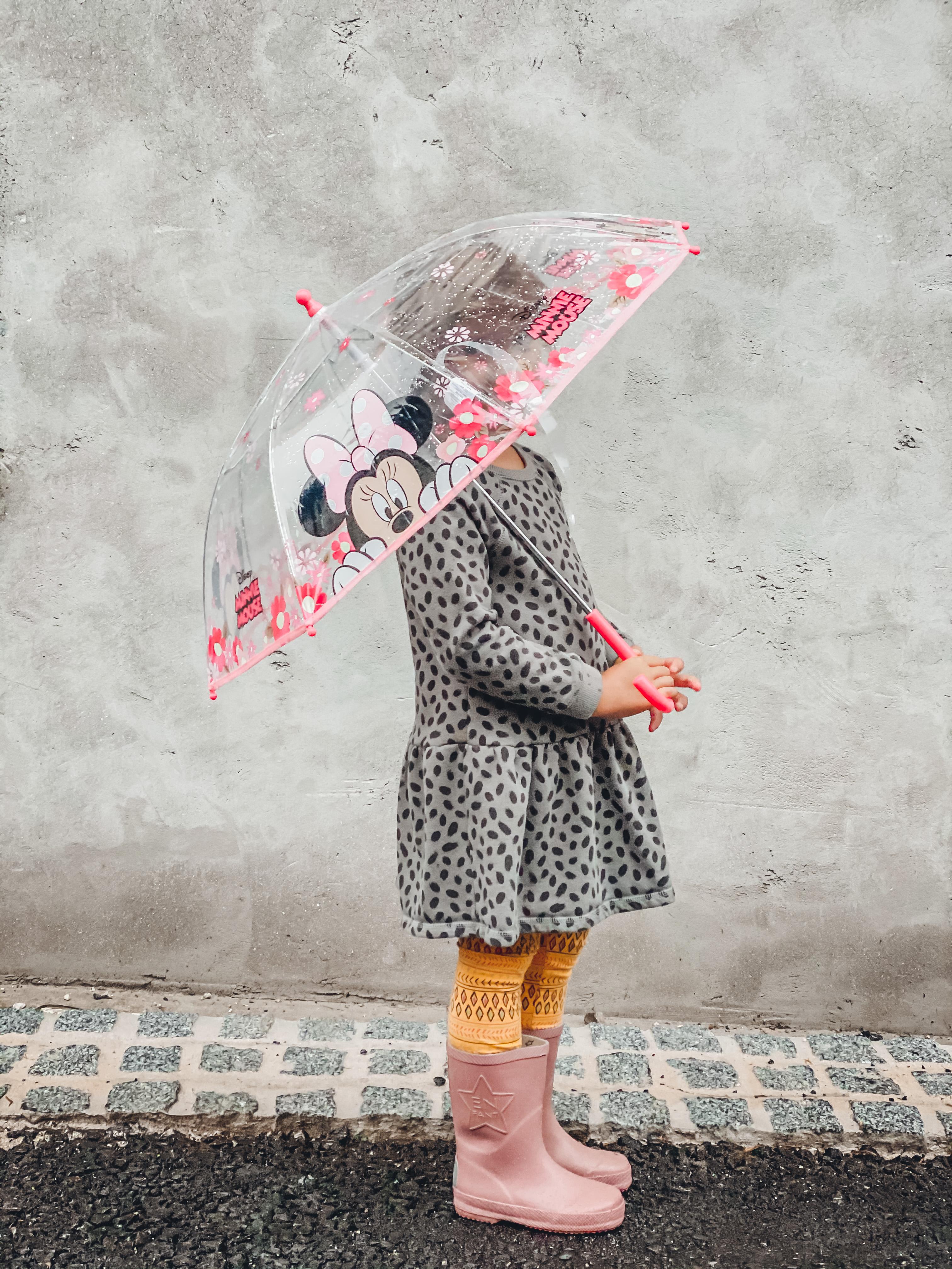 dežnik