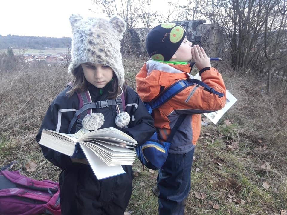 Gozdne raziskovalnice
